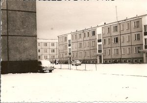 Platte im Schnee