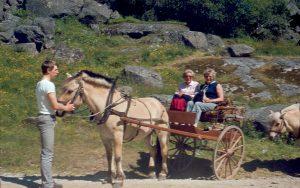 Kutschfahrt zum Jostedal Gletscher, 1982