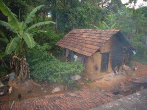 Hütte im indischen Dschungel