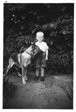 Junge mit Schäferhund