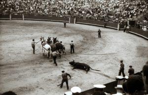 1958: Madrid Stierkampf in der Arena Las Ventas (6)