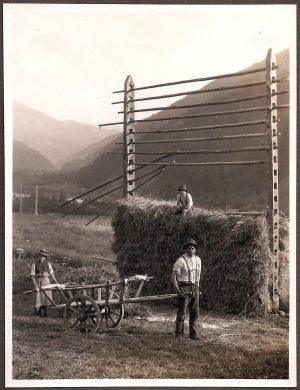 Österreich – Feldarbeit wie sie einmal war