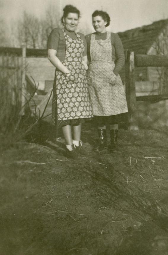 1950 Hausfrauen Fotos Auf Chroniknetcom